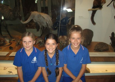 Melbourne Museum Excursion – Level 3