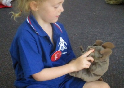 Social Emotional Active Learning Incursion